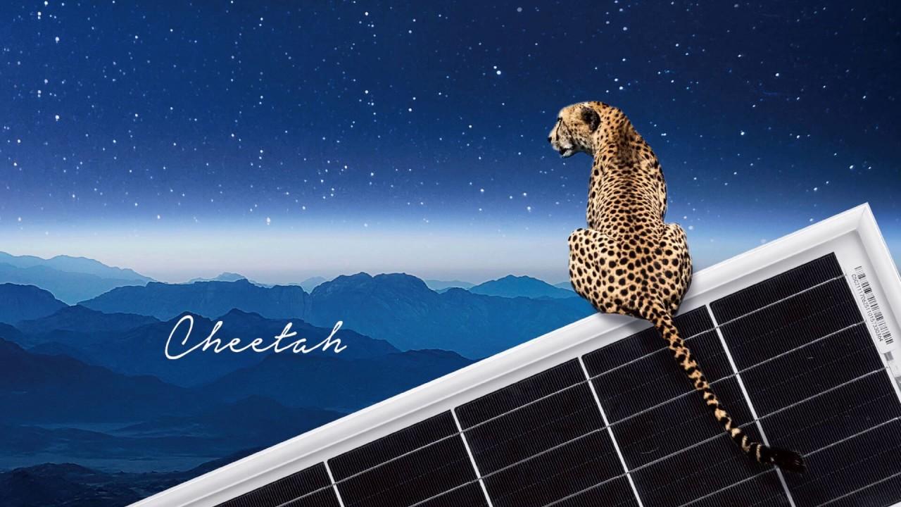 Introduction Video of JinkoSolar Cheetah 400W Solar Panel