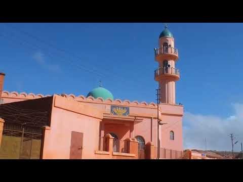 Eritrean Quran Reciters