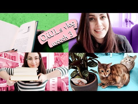 O.W.L.s Week 3 vlog: reading, cat tricks and HP house sorting | Book Roast
