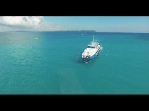 Neil Island - Andamans - Aerial Video - India