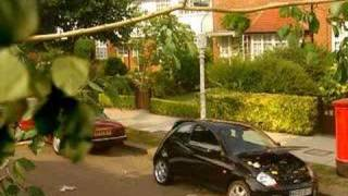 Ford Ka - Unused Advert 2 (Bird)