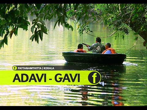 Adavi Eco-tourism | Konni | Gavi | Pathanamthitta | Kerala Tourism