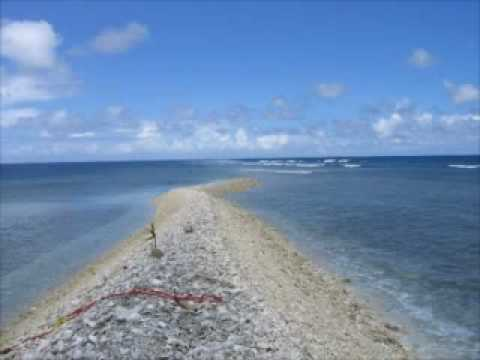 Kingman Reef pristine coral wilderness