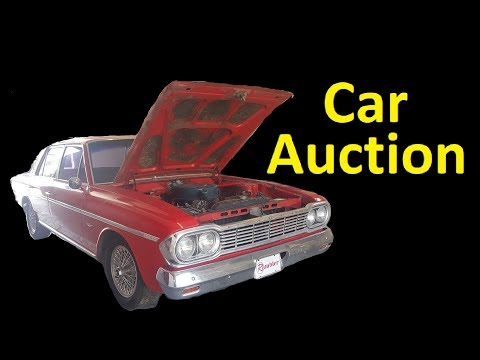 CAR AUCTION BUYING WHOLESALE PREVIEW SMALL LOCAL BUYING