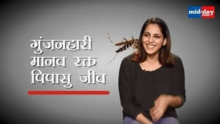 Do You Know What is Cricket Called in Hindi?  | World Hindi Day