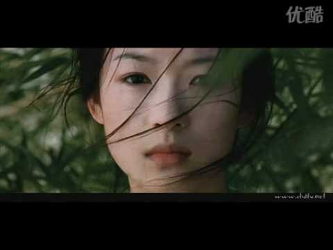 马友友,谭盾--Green Destiny -Love Theme.flv