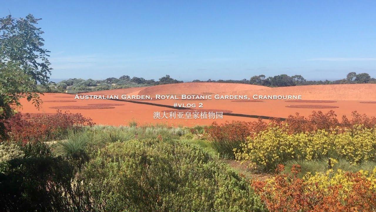 Vlog 2 墨尔本cranbourne皇家植物园australian Garden Royal Botanic