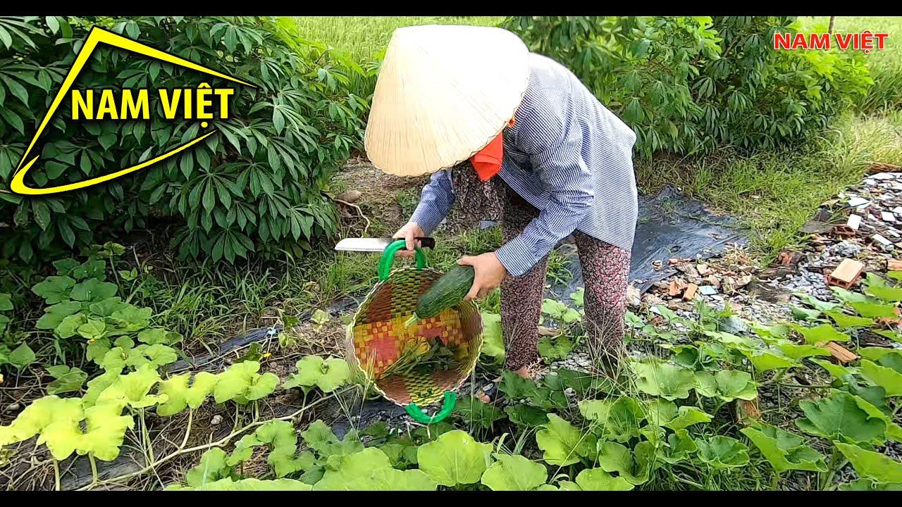 Mang giỏ cho to - mang theo mà đựng 😜 Nam Việt 1611