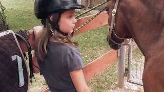 Konie...moja pasja (Agatka)