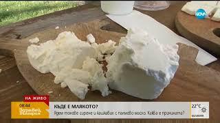 КЪДЕ Е МЛЯКОТО?: Ядем сирене и кашкавал с палмово масло (14.08.2018г.)