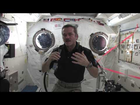 Hadfield Queried by CBC