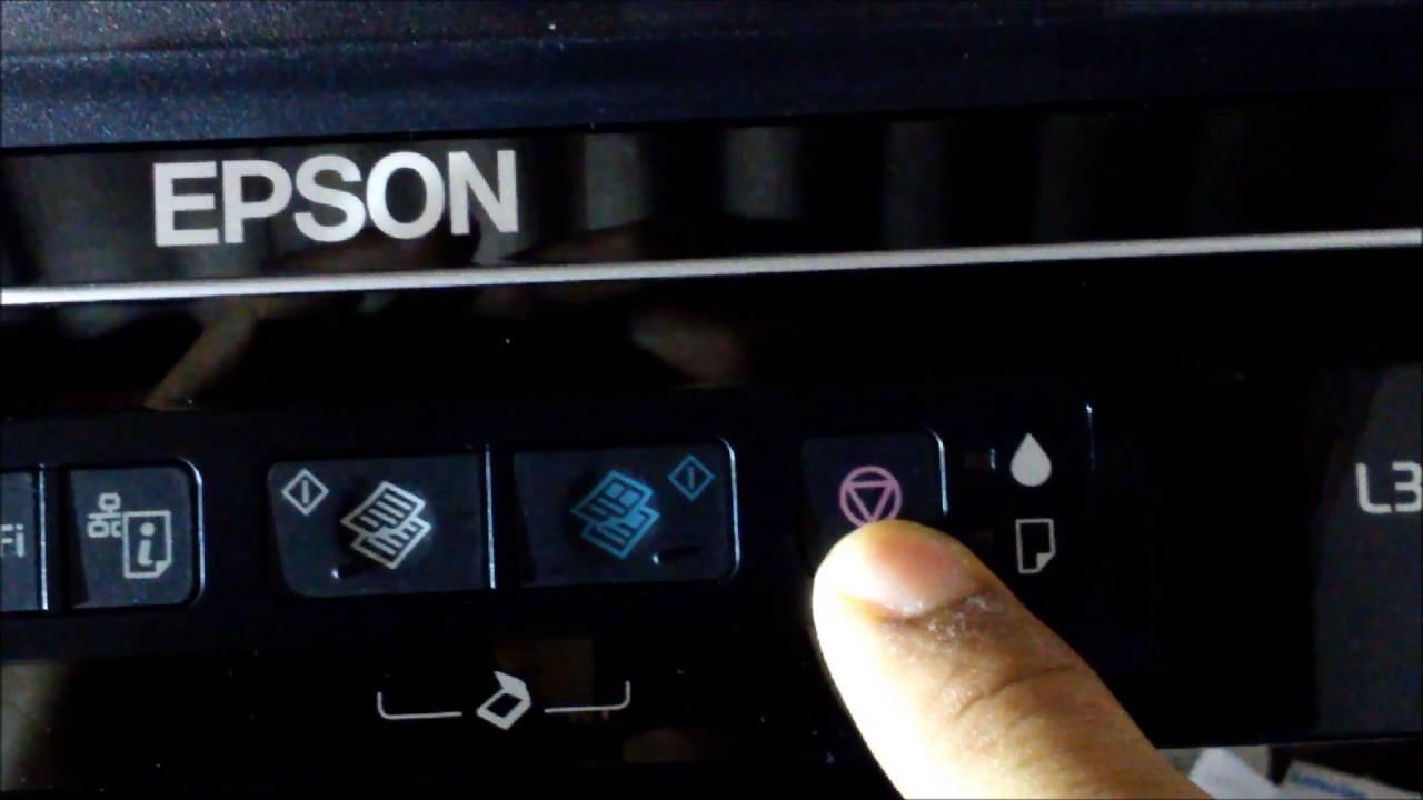 Conhe 199 A As 5 Fun 199 213 Es Deste Bot 195 O Nas Impressoras Epson
