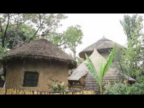 Berhan Ethiopia cultural Center