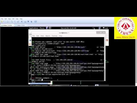hướng dẫn hack wifi bằng backtrack từ a--- z - Cách tạo mã độc trên kali linux 2