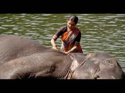 Jo Jo Malgaiya song Marathi film ASTU