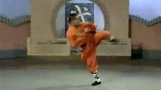 Repeat youtube video Shaolin long kung fu (chang quan)