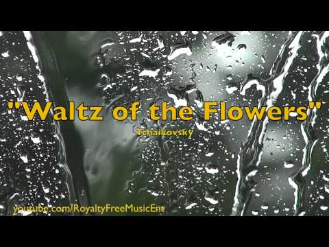 """Waltz of the Flowers"" by Tchaikovsky (Royalty-Free Music)"