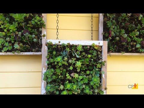 Jardim Vertical Tela - Curso a Distância Jardins Verticais