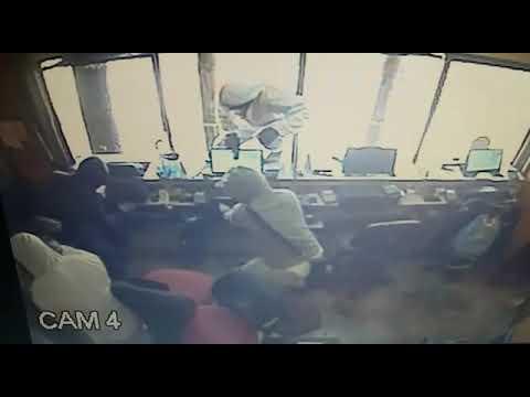 Video de asalto en el zoológico de Buin Zoo en Santiago. (1/2)