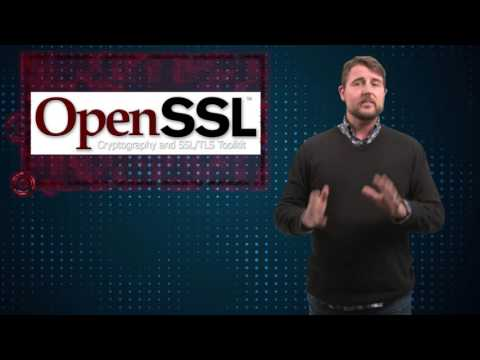 Openssl Dsa Vulnerability