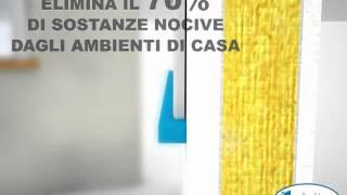 Habito Activ'Air® -- campione mondiale di parete massima