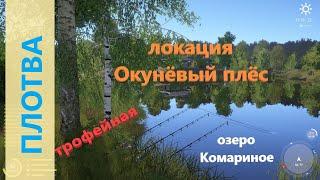 Русская рыбалка 4 озеро Комариное Плотва трофейная напротив базы