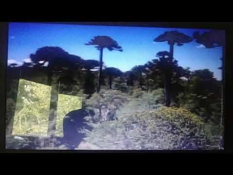 Prehistoric planet beginning scene