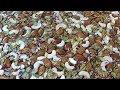 Dry Fruit Halwa Making - Corn Flour And Dry Fruits Halwa | Healthy And Tasty Halwa