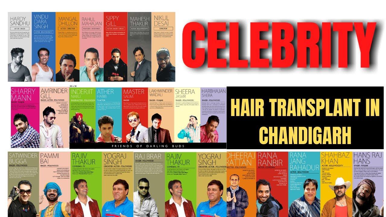 Celebrity  hair transplant in chandigarh   Darling Buds Clinic