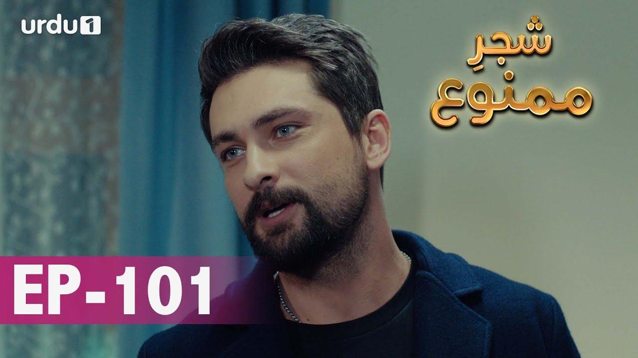 Download Shajar-e-Mamnu   Episode 101   Turkish Drama    Forbidden Fruit   Urdu Dubbing   29 April 2021