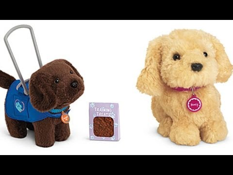 Service Dog (Chocolate Chip) and Honey (Review & Opening ...
