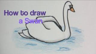 How to draw Birds #2 | SWAN