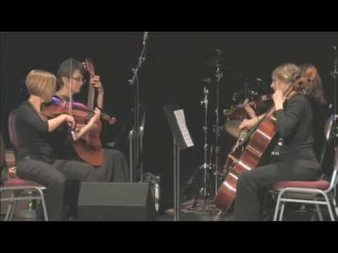 Sapphire String Quartet at the Music for Haiti Benefit - Janesville WI