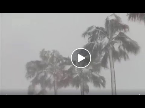 First Ever Snowfall on Okinawa Island, Japan | Mini Ice Age 2015-2035 (124)