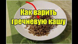 Как варить гречневую кашу   Видео Рецепт