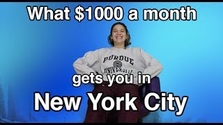 What $1000 Gets You In NYC ft. Intern Natalie