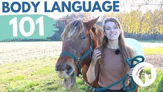 READING HORSE BODY LANĠUAGE & BEHAVIOR
