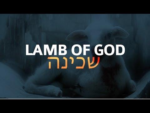 Vertical Worship - Lamb of God (Official Lyric Video ...