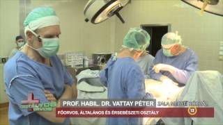 Osztályos orvos - Általános és Érsebészeti Osztály