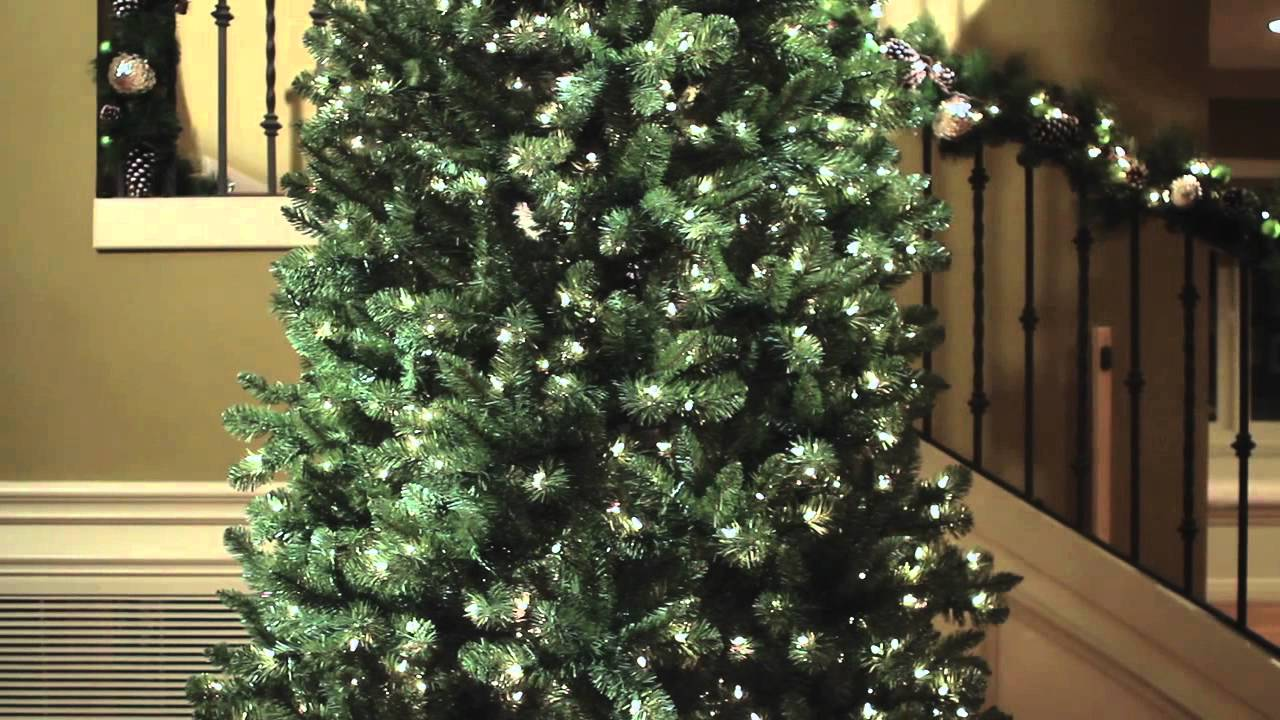 Sams 12ft Slim Christmas Tree - YouTube