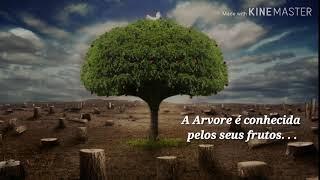 - Elias- Árvore com frutos maus 💥👿
