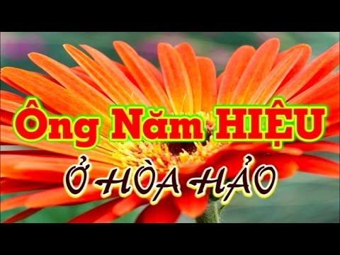 Chuyện kể về ÔNG NĂM HIỆU ở HÒA HẢO