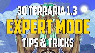 Terraria 1.3 30 EXPERT MODE TIPS & TRICKS YOU MUST KNOW! | PC | PS4 | XBOX1