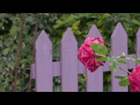 Nouvelle vidéo Jardin-Jardinier: le Jardin des Violettes