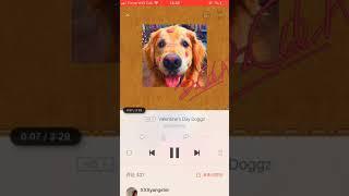 KnowKnow- Valentine's Day Doggz