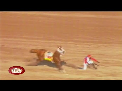 Scary fall for champion jockey Shane Ellis & more! | At The Track | Sept 8, 2016