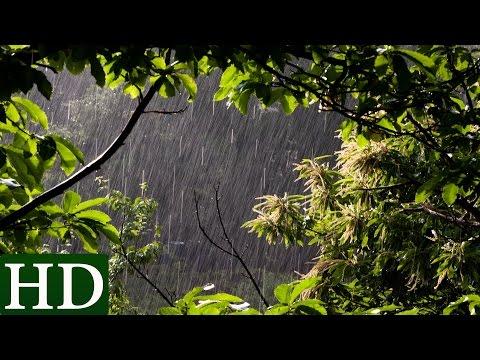 Regen - HD - Regengeräusche und Naturgeräusche