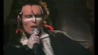 JOLLY ROGER by ADAM AND THE ANTS