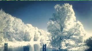 Очень красивое видео про животных и природы