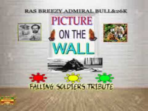 PICTURE ON THE WALL RAS BREEZY,ADMIRAL BULL1983&26K PROMO CLIP copyright